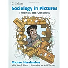 Theories and Concepts (Sociology in Pictures)