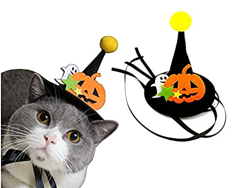 Haustier Halloween Kürbis Geist Hut für Katzen und kleine Hunde Kostüm Unternehmen Top Hut Verstellbare Kopfbedeckung Hexe Hut Party Kostüm (Nicht Grund Halloween Kostüme)