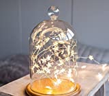 #9: Quace Star Copper Wire String Lights Led Fairy Decoration Lights 2M - 20 Stars