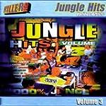 Jungle Hits Volume 3