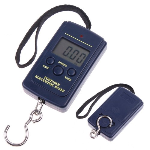 TIMETOP - Báscula digital portátil con gancho para pesca, 20 g, 40...