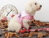 #8: Pet Stripes Vest Mesh Harness and Lead Leash Set for Small Dogs and Cats 1 Set Color May Vary