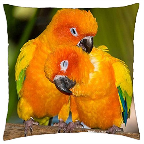 "Parrots in love - Throw Pillow Cover Case (18"" x 18"")"