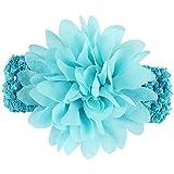CAOLATOR 1X schönes Haar Band Baby Stirnbänder Chiffon Haar Blume Element Typ Kopfbedeckungen für Mädchen (Hellblau)
