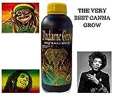 MADAME GROW Naturdünger Bio-Grow Grow Accelerator Pure Bio Düngemittel 1 Liter: für alle Arten von Pflanzen 100% Veganer und organischer NPK Dünger mit Aminosäuren