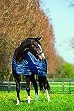 Horseware Liner System 100 g (125)