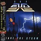Brave the Storm [+6 Bonus]