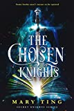 The Chosen Knights (Secret Knights Book 1) (English Edition)