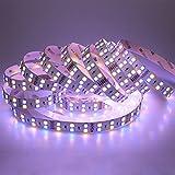 LTRGBW Doppelte Reihe DC 24V 600LEDs / spool 5m RGBW RGB + Warmes Weiß (2800k-3000K) 5050 SMD Nicht wasserdichte RGBWW LED-Streifenlichter für Hochzeitsfest-Feiertag im Freien LED-Beleuchtung