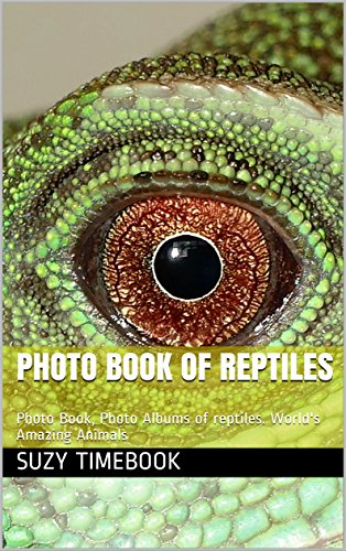 photo-book-of-reptiles-photo-book-photo-albums-of-reptiles-worlds-amazing-animals-english-edition