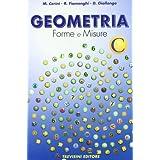 Geometria. Forme e misure. Vol. C. Per la Scuola media