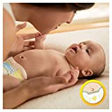 Pampers Premium Protection New Baby Windeln, Gr. 1, 2-5kg, Halbmonatsbox, 1er Pack (1 x 96 Stück) - 3