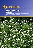 Kiepenkerl Waldmeister