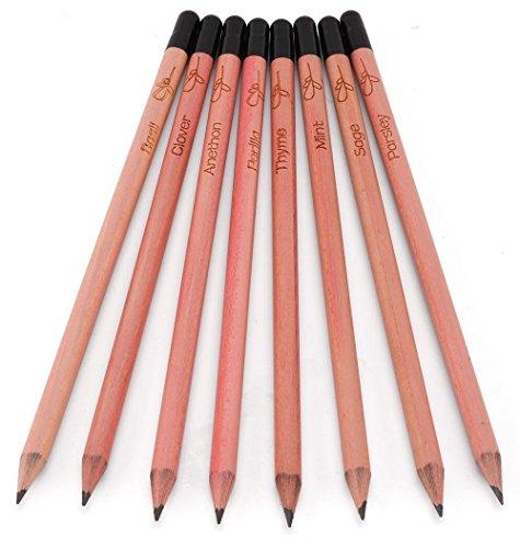 Sprießender Bleistift-Kraut-Satz - planbarer Bleistift mit Samen, 1 Packung, 8 Stück