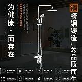 Bijjaladeva Waschbeckenarmatur für Duschen Dusche Kit Lift Mixer Multifunktions Heiß und Kalt Unter Druck stehende Paket beinhaltet: Steel Tube Top Spray Duschschlauch Hand - Kurbelzapfen
