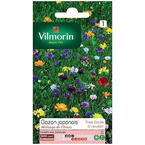 Vilmorin - Sachet graines Gazon Japonais surface 4m²