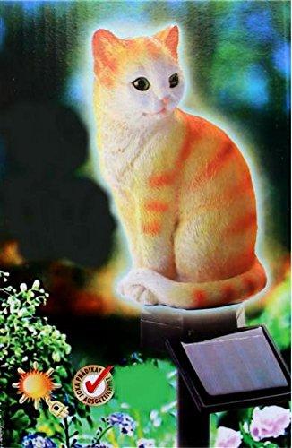 Solar Stableuchte sitzendes Kätzchen Beleuchtung rot/weiß sitzende Katze 14908