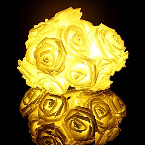 esamconnr-luci-della-stringa-del-fiore-della-rosa-di-66feet-2m-20led-luce-stellata-per-i-giardini-le