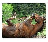 17P05583 Hochwertige Kreativität Mousepad Gaming-Mausunterlage Pferd im Schlamm Hufe in der Luft