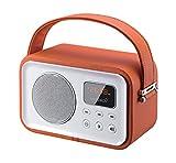 Sunstech RPBT450OR - Radio portátil (Digital FM, Altavoz, Bluetooth, micrófono, USB, SD, 2.5W...