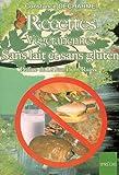 Image de Recettes végétariennes sans lait et sans gluten