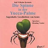 Die Spinne in der Yucca-Palme