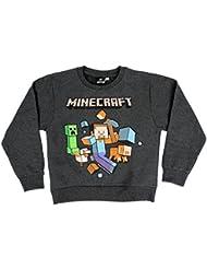 Minecraft - Sweat-shirt - Steve & Mobs - Garçon