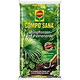 COMPO SANA® Grünpflanzen- und Palmenerde, hochwertige Spezialerde für alle Grünpflanzen, Palmen und Farne in Töpfen und Kübeln, 10 L