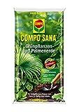COMPO SANA Grünpflanzen- und Palmenerde mit 8 Wochen Dünger für alle Zimmer- und Balkonpflanzen sowie Palmen und...