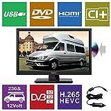 HKC 17H2C 17,3 Zoll (43,94 cm) LED-Fernseher mit DVD-Player (HD-Ready, Triple Tuner DVB-T2/S2/T/S/C, CI+.265/HEVC. 230V / 12V Kfz-Adapter, schwarz) [Energieklasse A +]