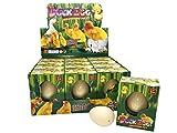 JustRean Toys  Magisches Enten Schlüpf Ei - Magic Growing Egg - Entenei Schlüpfei