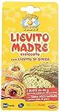 La Prova del Cuoco Lievito Madre Essiccato con Lievito di Birra- 2 Buste x 40 gr