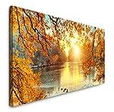 Paul Sinus Art GmbH schöne Bunte Bäume 120x 50cm Panorama Leinwand Bild XXL Format Wandbilder Wohnzimmer Wohnung Deko Kunstdrucke