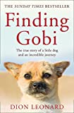#6: Finding Gobi: The True Story of a Little Dog and an Incredible Journey
