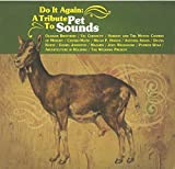Do It Again : A Tribute To Pet Sounds