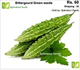 Bittergourd green long - 20 seeds