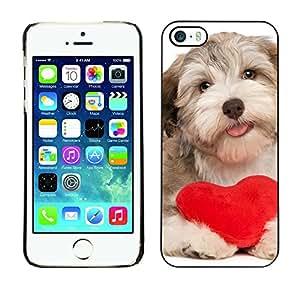 Vortex Accessory Coque Etui Housse De Protection Pour APPLE iPHONE 5 / 5S - Havanese Heart Valentines Love Dog Puppy -