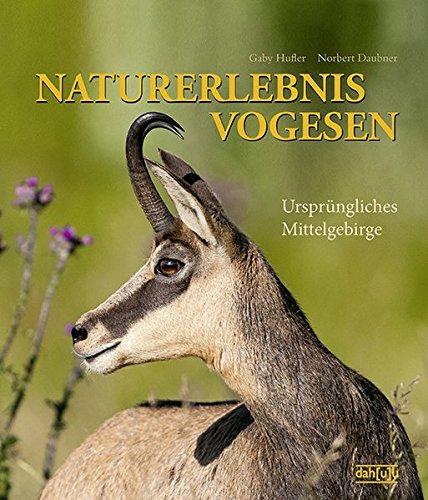 NATURERLEBNIS VOGESEN: Ursprüngliches Mittelgebirge