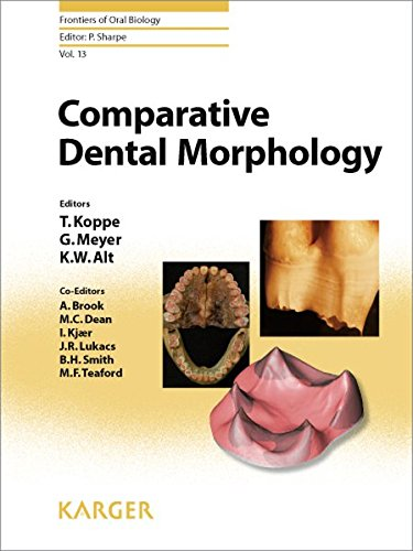 Comparative Dental Morphology: 14th International Symposium on Dental Morphology, Greifswald, August 2008: Selected papers. (Frontiers of Oral Biology, Band 13)
