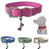 Lushpetz Hundehalsband mit Knochen-Charme Erhältlich in Rosa, Blau, Rot, Grün, Weiß oder Lila für XS, Kleine, mittlere und große Rassen (XS, Hot Pink)