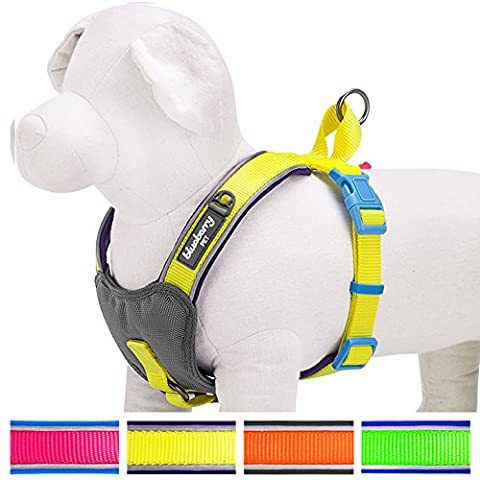 Blueberry Pet Soft & Comfy Summer Hope 3M Reflective Harness Vest, Chest Girth 47cm-53cm, Neck 45cm, Fluorescent Yellow Padded Dog Harness, Ultra-soft No Pull