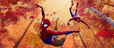 Spider-Man: A new Universe (Blu-ray Steelbook)