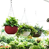 Antier Plastic Plant Pot With Hanging Chain, Multicolour, 3 Pieces