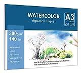 Aquarellpapier (A3, 300 g/m², 10 Blatt), Lelengder Aquarellblock Glatt Watercolor Paper, Wellen Strukturiert & Matt Aquarell Papier für Aquarellmalerei Wasserfarben Gouache Acryl Aquarelltechniken