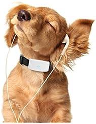 TKSTAR Haustier Hunde Katze Pet GPS Tracker WIFI Real Time Tracking & Activity Monitor Tracker Kostenlose Online App tk911 schwarz