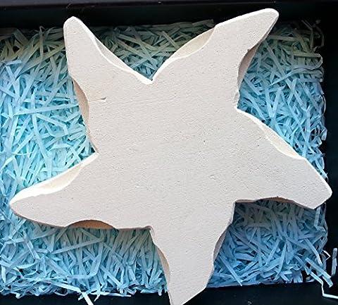 Handgemacht in Italien - Seestern aus Stein - Elegante Geschenkbox
