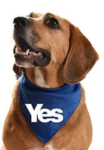Yes dog bandana -...