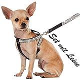 XS Schwarz mit Leine Chihuahua Hunde Strass Geschirr Hundegeschirr