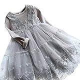 NNJXD kleine Mädchen gestickte lange Hülsen-beiläufige Kleid-Prinzessin Tutu-Kleid-Größe (110) 3-4 Jahre Grau