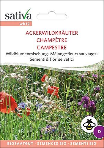 Sativa Rheinau wb12 Wildblumenmischung Ackerwildkräuter (Bio-Wildblumensamen)